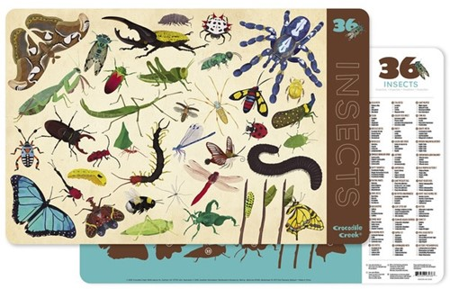 Crocodile Creek Placemats 36 Insects