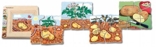 Beleduc  houten lagenpuzzel Aardappel-1