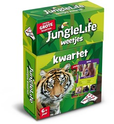Identity games  kwartet Junglelife