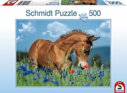 Schmidt  legpuzzel Welsh Pony - 500 stukjes