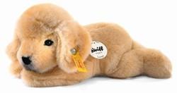 Steiff - Knuffels - Little friend Lumpi Golden Retriever puppy, golden blond