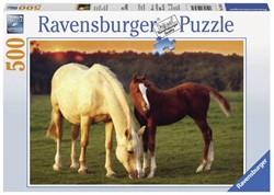 Ravensburger  legpuzzel Mooie paarden - 500 stukjes