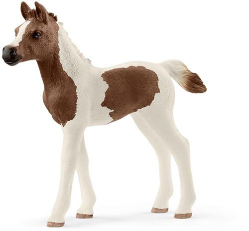 Schleich Paarden - Pintabian Veulen 13839