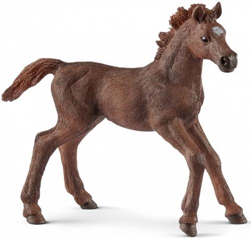 Schleich Paarden - Engelse Volbloed Veulen 13857