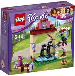 Lego  Friends set Veulen wasplaats 41123