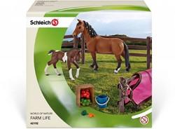 Schleich Horse Club - Paddock Met Accessoires  42192