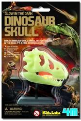 4M  Kidz Labs wetenschap speelgoed Dinosaurus schedel glow in the dark