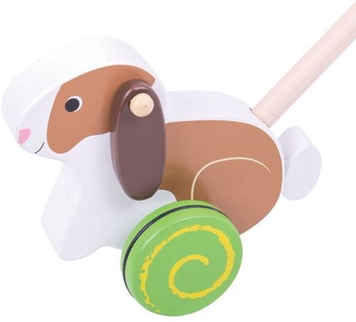 Bigjigs Rabbit Push Along (4)