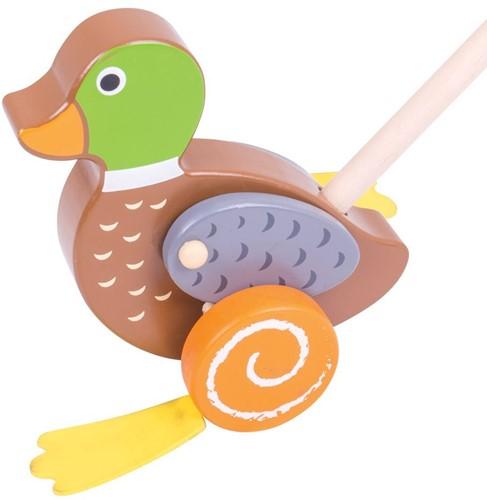 Bigjigs Duck Push Along (4)