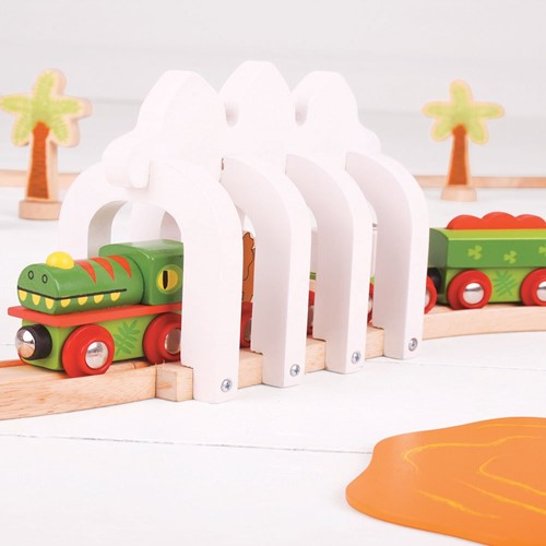 Bigjigs Dinosaur Train-3