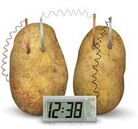 4M  Green Science wetenschapsdoos Aardappel klok-2